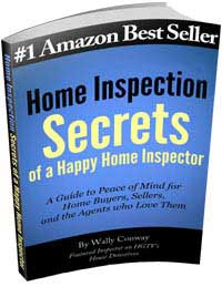 Wally's #1 Amazon Bestseller Book